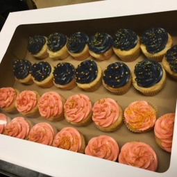 Navy and pink cupcakes for a gender reveal party