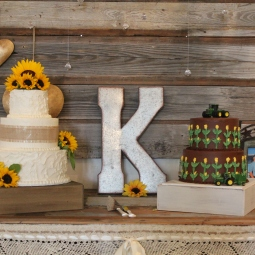 In love with the bride and grooms' cakes together!