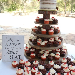 Such a beautiful wedding to be apart of! Semi-naked cake for the bride and groom and 160 cupcakes for their guests!