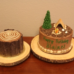 Tree trunk smash cake and camping themed party cake! So much fun!