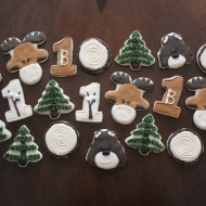 Camping themed cookies for a 1st birthday party!